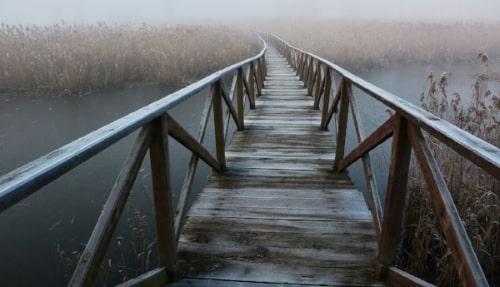 Er du gået over broen i dag?
